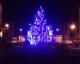 В ЖК «Столичный» зажглась новогодняя елка