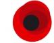 Вечная память жертвам Второй мировой войны